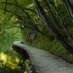 Shawn Talbot Croatia Travel Tourism Bridge