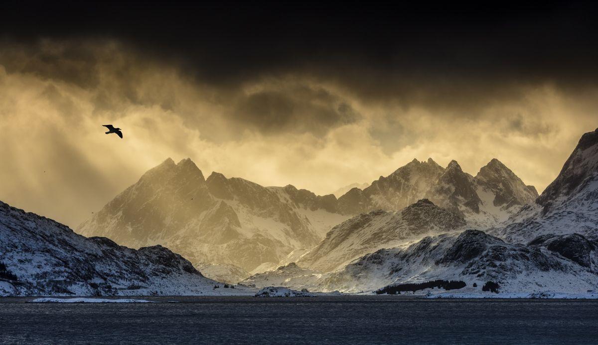 Shawn Talbot Norway Travel Tourism Sunset