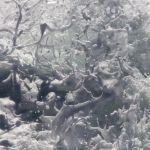 Shawn Talbot Travel Tourism Tofino Water Splash Abstract