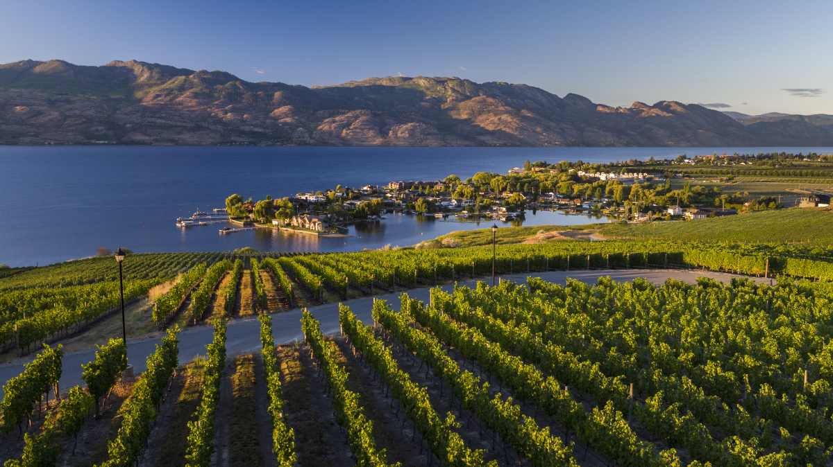 Travel Shawn Talbot Luxury Hotel Resort Photographer Okanagan Vineyard