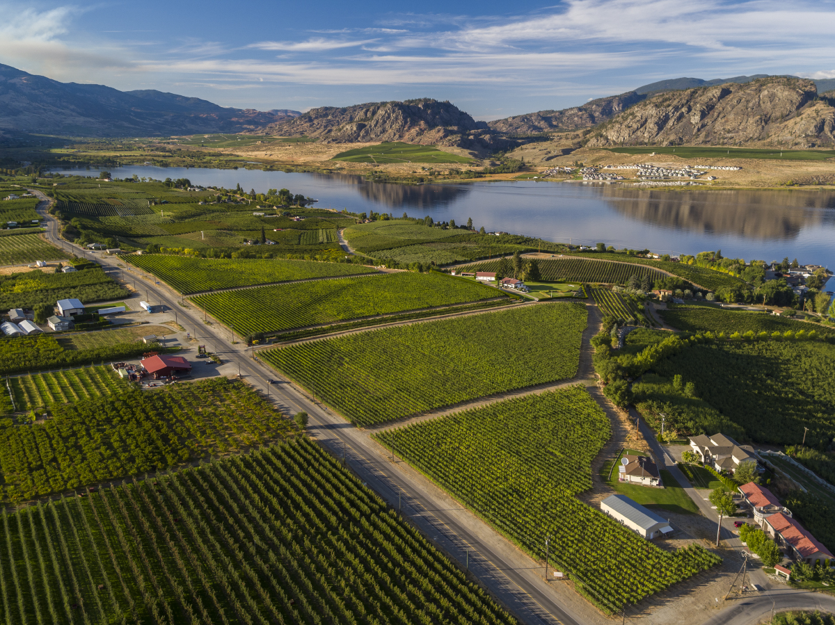 Commercial Photographer Kelowna - Cedar Creek Winery