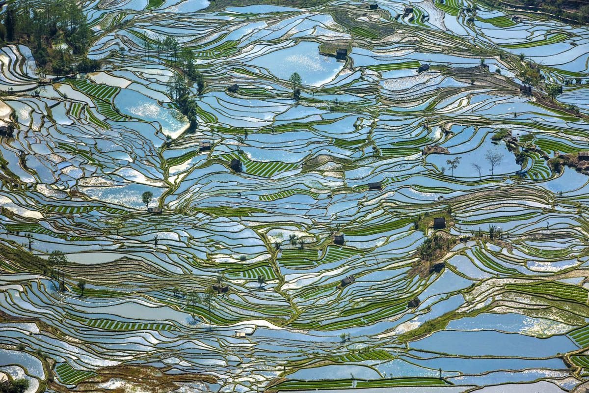 Shawn Talbot Kelowna Commercial Photographer China Rice Terraces