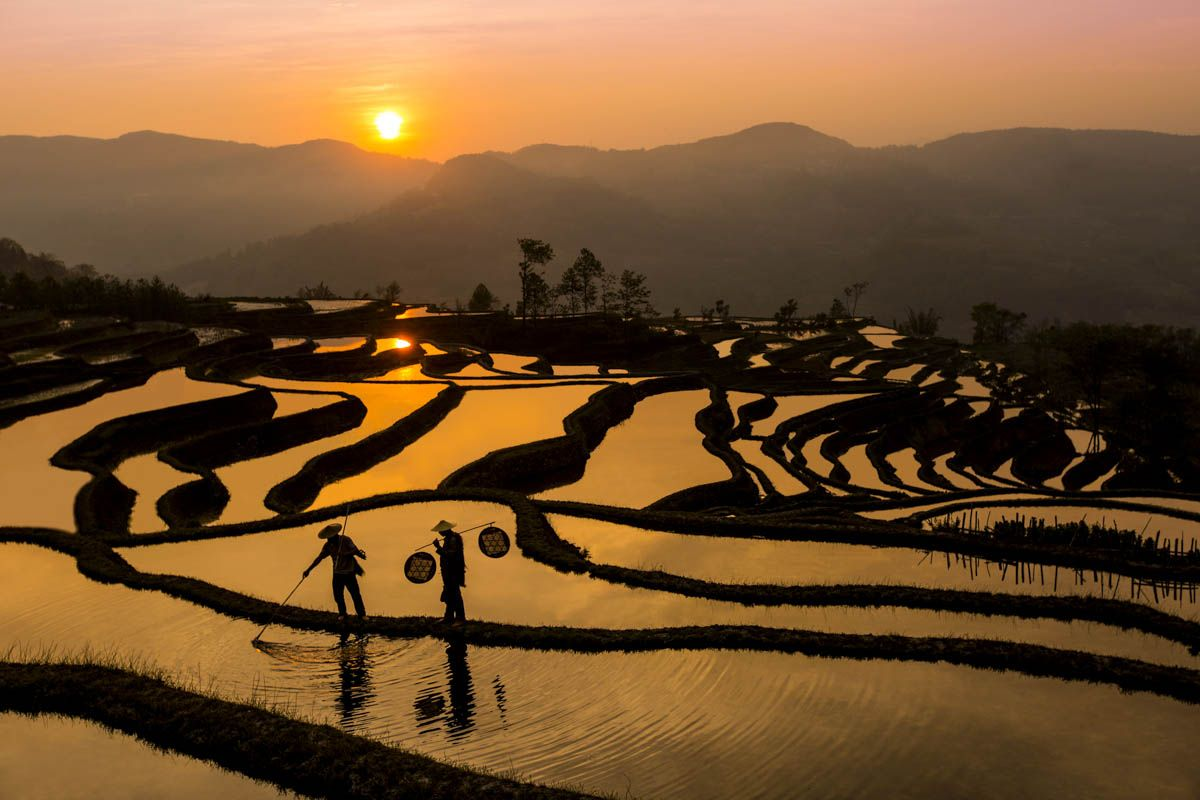 Shawn Talbot Kelowna Commercial Photographer China Longsheng Rice Terrace